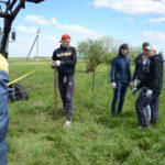 Стройотрядовцы устанавливают ограду от скота/ НМО